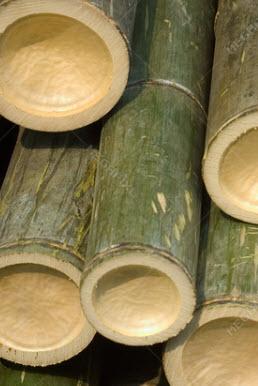 درب چوبی ساختمان بامبو ساختمونی ها